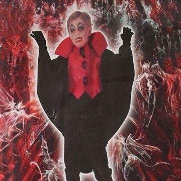 Imagen de Disfraces Infantiles Hallowen Vampiro